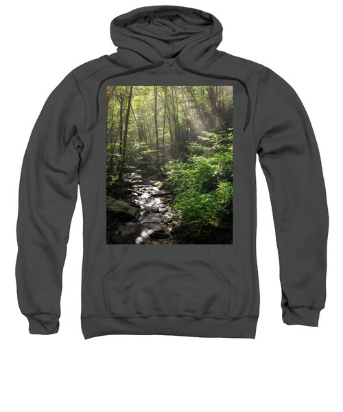 Deep In The Forrest - Sun Rays Sweatshirt