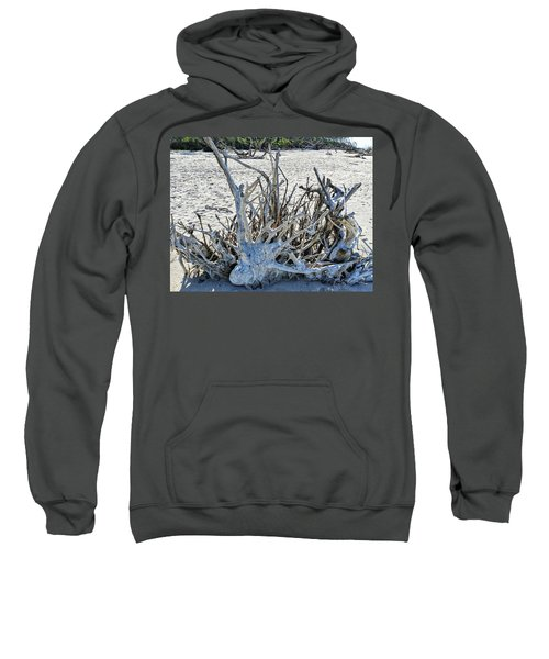 Deep Roots Sweatshirt