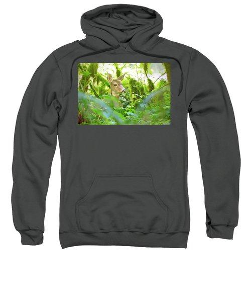 Deer In Rainforest 4 Sweatshirt