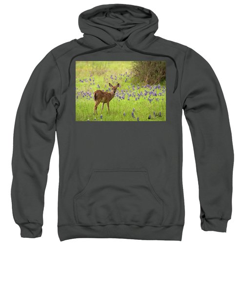 Deer In The Bluebonnets Sweatshirt