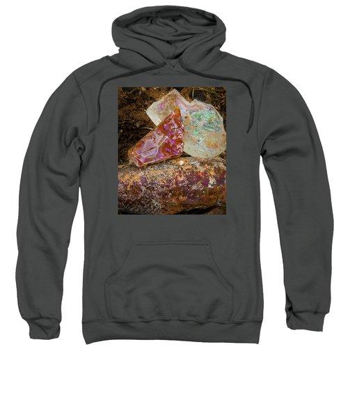 Desert Gems Sweatshirt