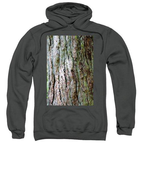 Details, Old Growth Western Redcedars Sweatshirt