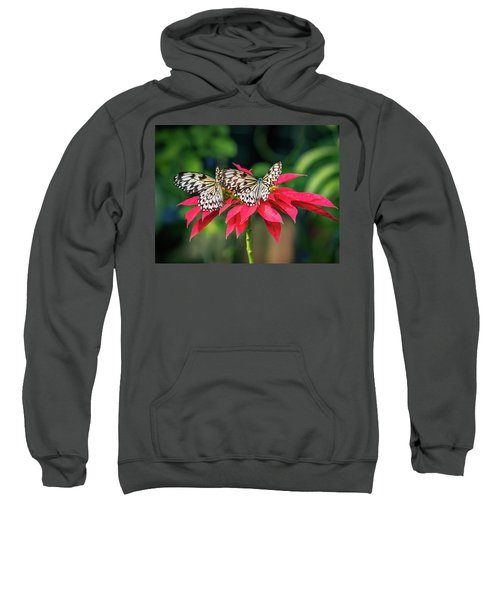 Double Delight Sweatshirt
