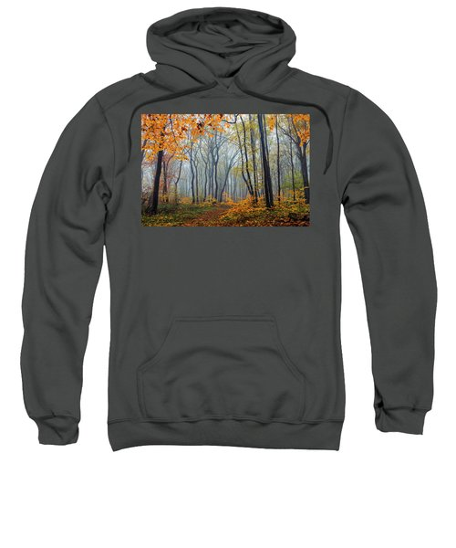 Sweatshirt featuring the photograph Dream Forest by Evgeni Dinev