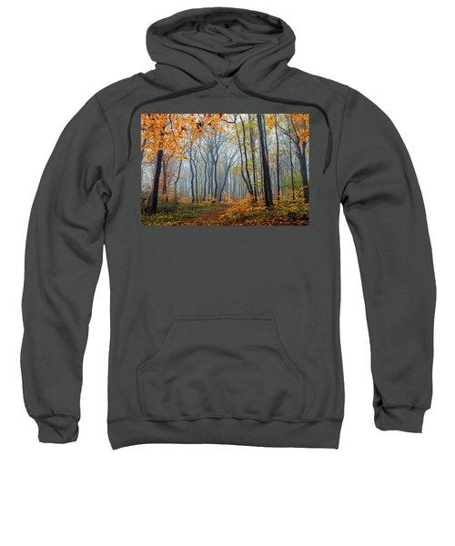 Dream Forest Sweatshirt