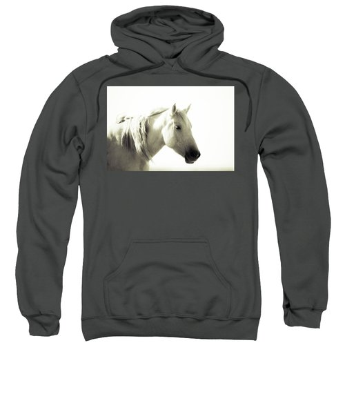 Dreamy Mare Sweatshirt