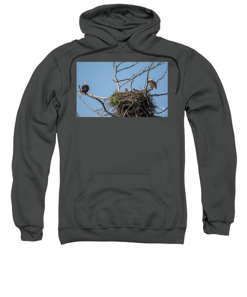 Eagles With Eaglets Sweatshirt