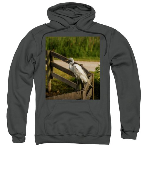 On The Fence Sweatshirt