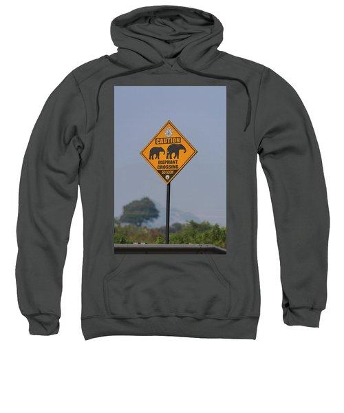Elephant Crossing Sweatshirt