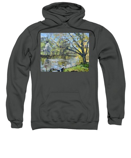 Ellicott Creek Park Sweatshirt