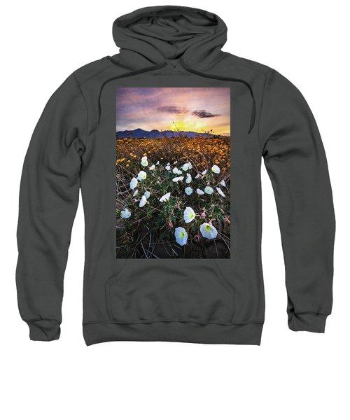 Evening With Primroses Sweatshirt