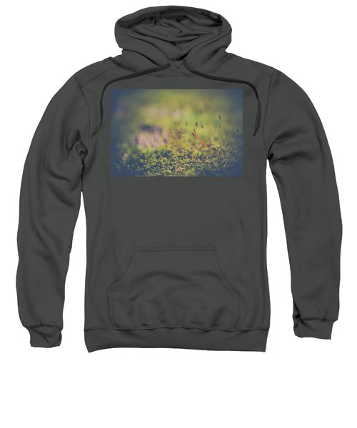 Fairy Hunt Sweatshirt