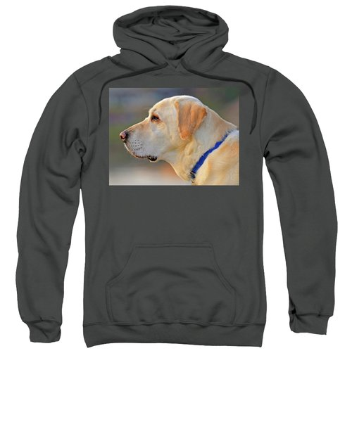 Faithful Sweatshirt