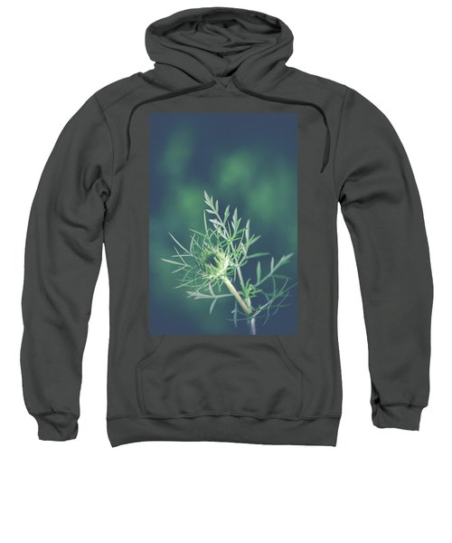 Fascinate Sweatshirt