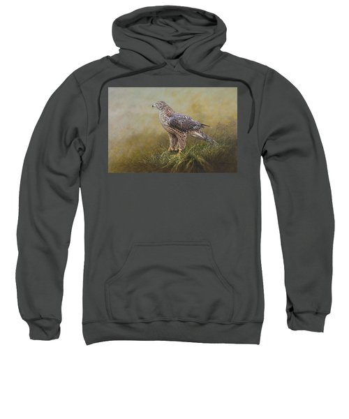 Female Goshawk Paintings Sweatshirt