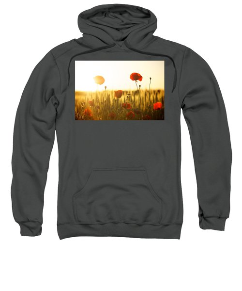 Field Of Poppies At Dawn Sweatshirt