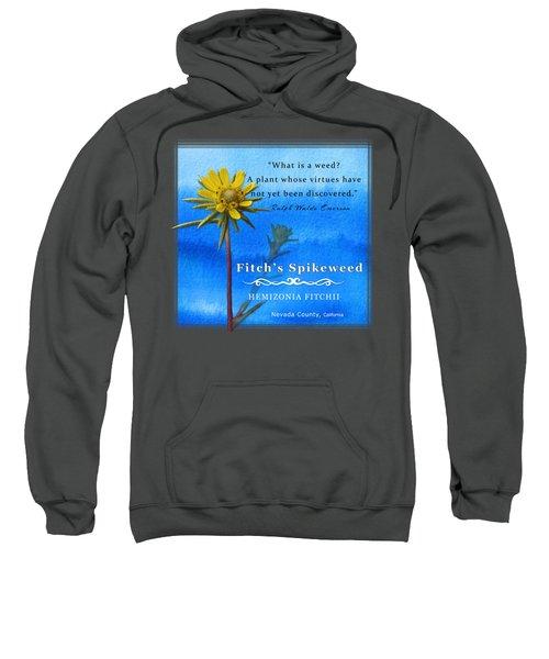 Fitch's Spikeweed Sweatshirt