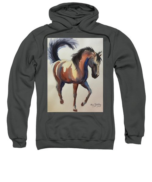 Flashing Bay Horse Sweatshirt