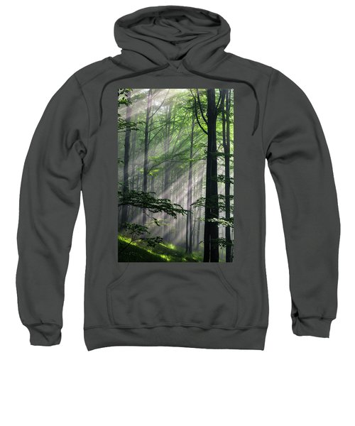 Sweatshirt featuring the photograph Fleeting Beams by Evgeni Dinev