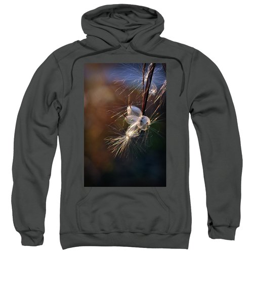 Flight Sweatshirt