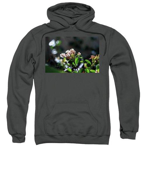 Beautiful Blooms Sweatshirt