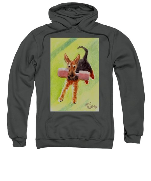 Flying Dale Sweatshirt