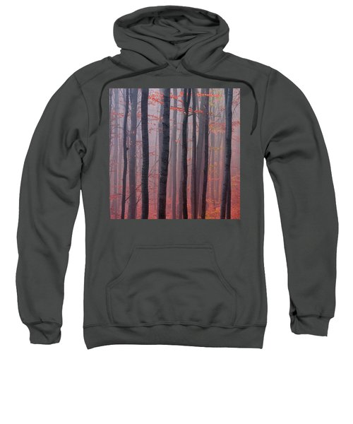 Sweatshirt featuring the photograph Forest Barcode by Evgeni Dinev