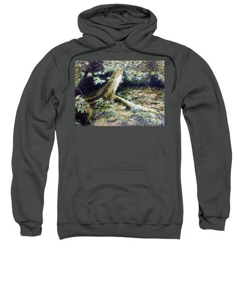 Forest Edge Sweatshirt