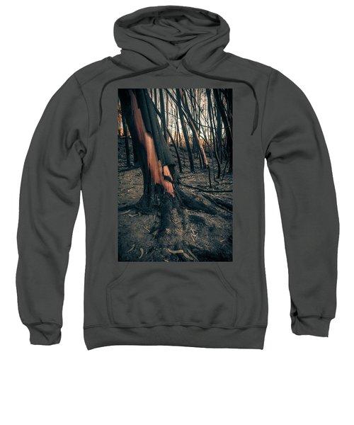 Forest Fire Sweatshirt