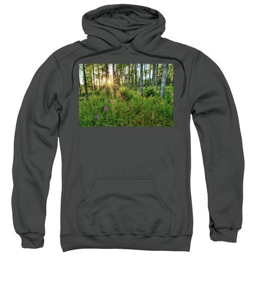 Forest Growth Alaska Sweatshirt
