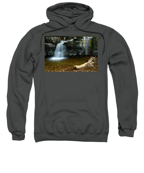 Forged By Nature Sweatshirt
