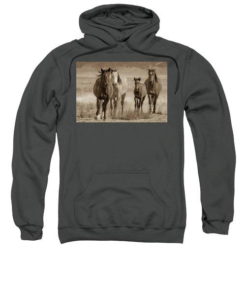 Free Family Sweatshirt