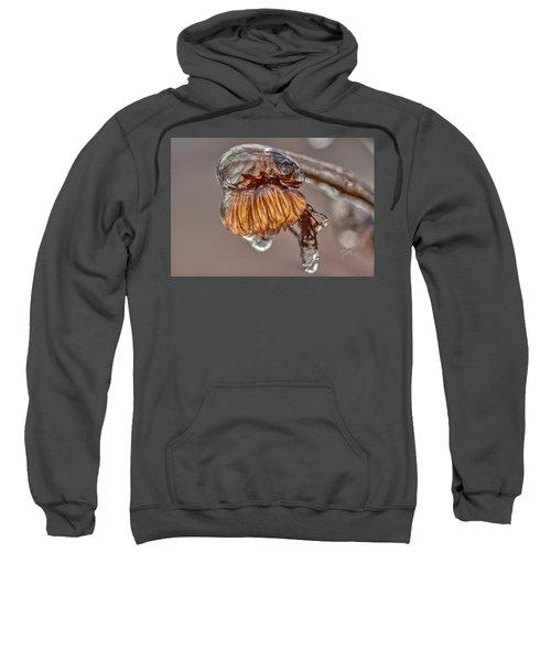 Frozen Blond Sweatshirt