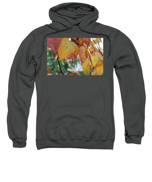Icy Foliage Sweatshirt