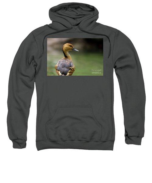 Fulvous Whistling Duck Sweatshirt