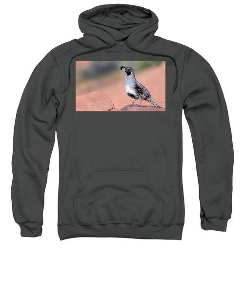 Gambels Quail Two Sweatshirt