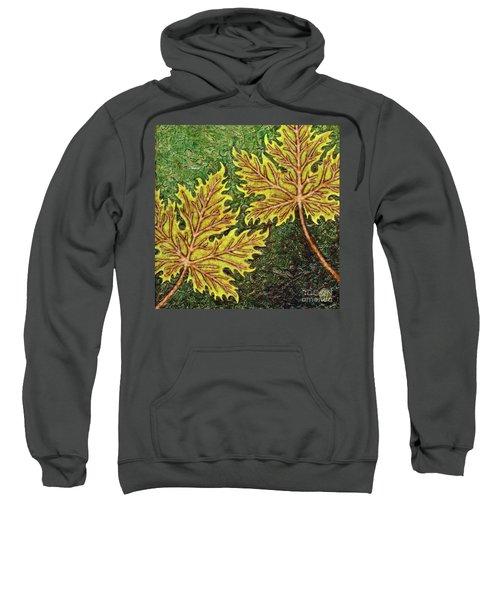 Garden Room 35 Sweatshirt