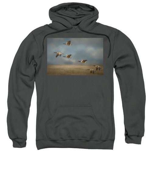 Geese, Coming In For A Landing Sweatshirt