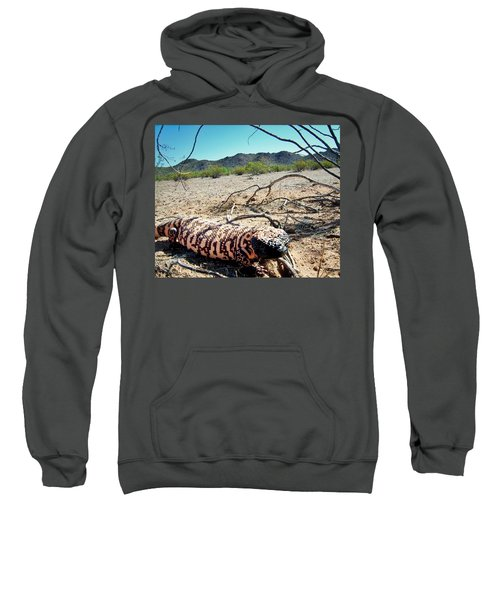 Gila Monster In The Arizona Sonoran Desert Sweatshirt