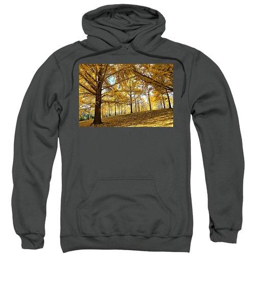 Ginkgo Grove Sweatshirt
