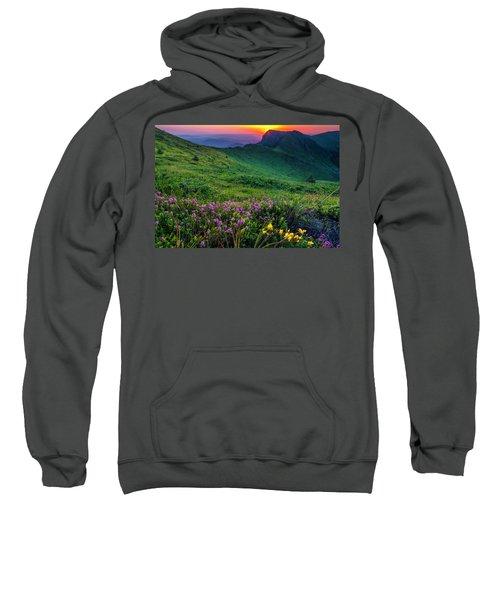 Goat Wall Sweatshirt