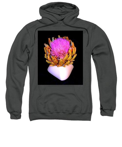 Gold And Pink Sweatshirt