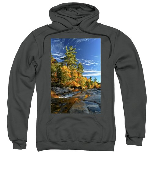 Golden Autumn Light Nh Sweatshirt