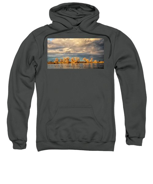 Golden Hour In The Refuge Sweatshirt