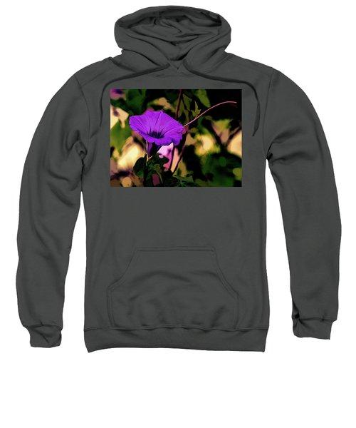 Good Morning Glory Sweatshirt
