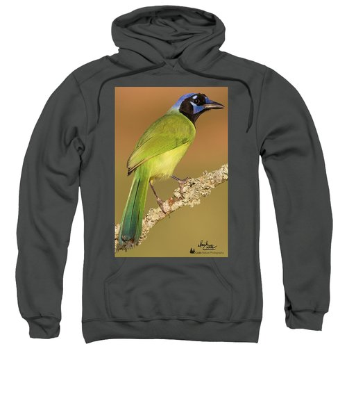 Gorgeous Green Jay Sweatshirt