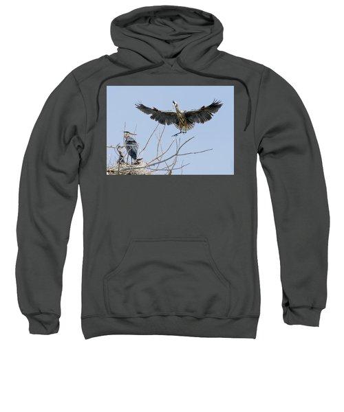 Great Blue Heron Rookery 2 Sweatshirt