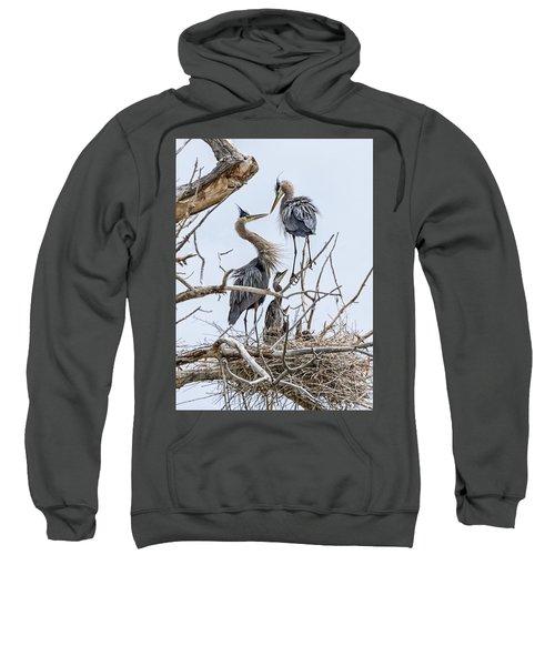 Great Blue Heron Rookery 4 Sweatshirt