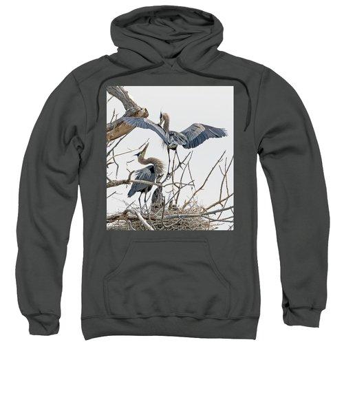 Great Blue Heron Rookery 5 Sweatshirt