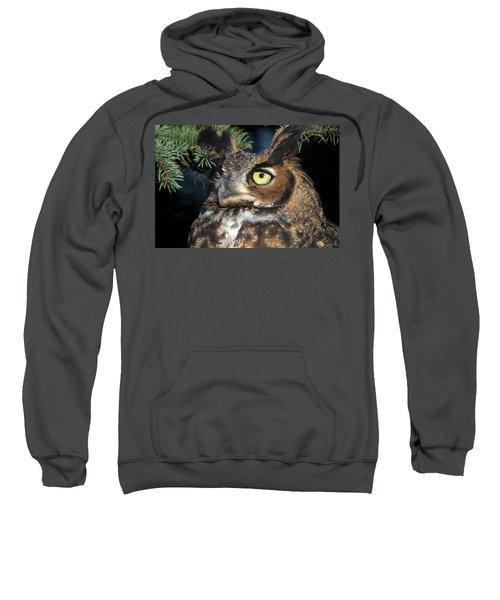 Great Horned Owl 10181801 Sweatshirt